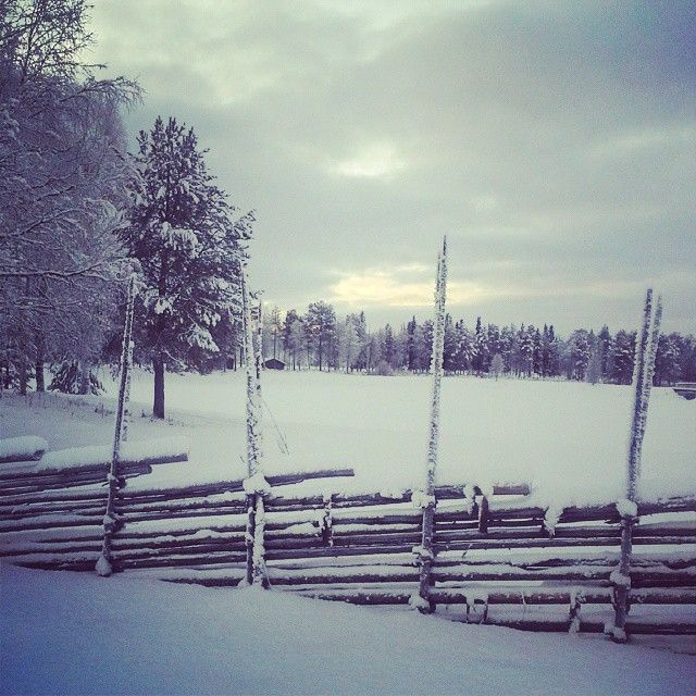 #16. A traditional swedish fence. A little bit more then a week left, but we hope for a white Christmas.