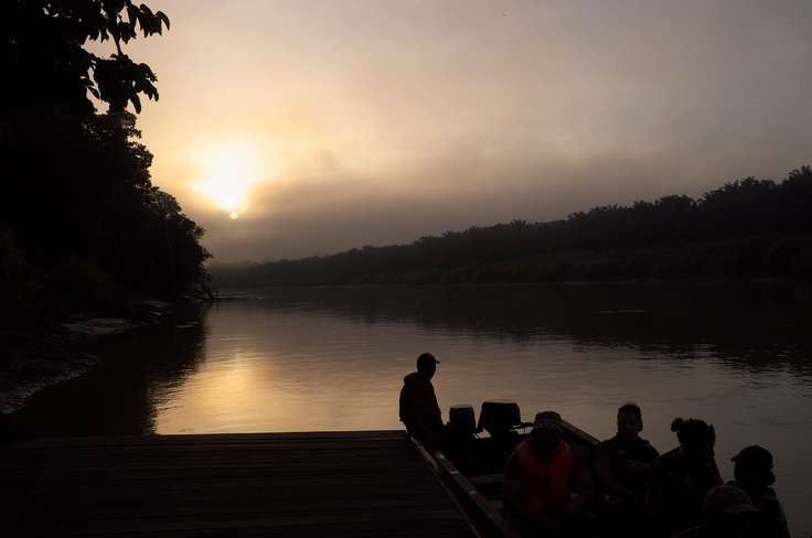 Early morning boat trip in Kinabatangan rainforest