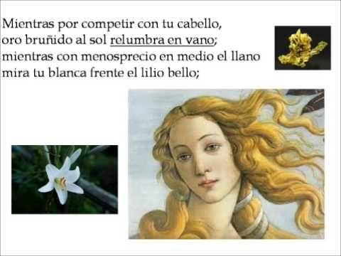 Mientras por competir con tu cabello - famoso poema o tambien conocido como el Soneto CLXVI de Luis de Argote y Gongora