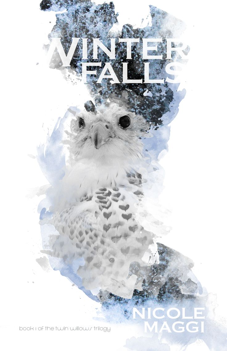 #CoverReveal Winter Falls (Twin Willows Trilogy, #1) by Nicole Maggi