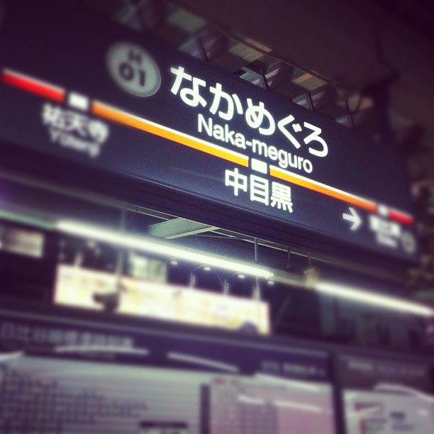 中目黒駅 (Naka-meguro Sta.) (TY03/H-01) : 東京, 東京都