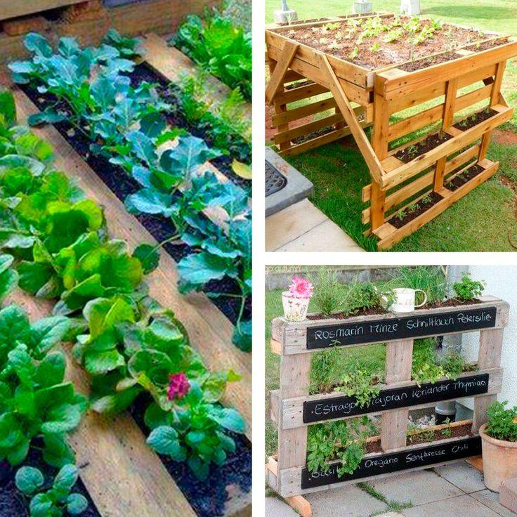huerto con palets jardineras