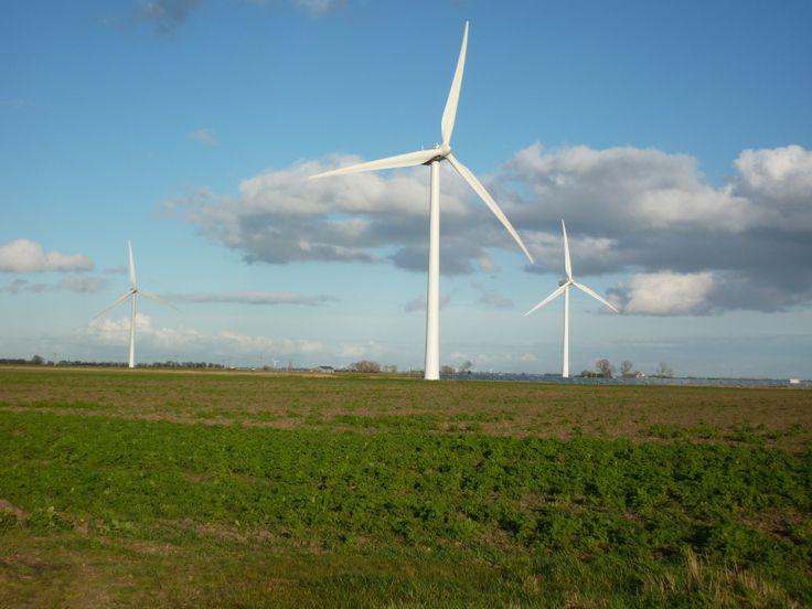 Wind turbines near Turves, Cambridgeshire