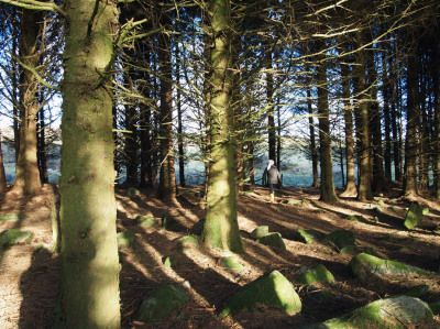 Travels with Chefs, a postcard from Cornwall | In pursuit of food...
