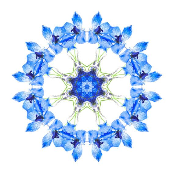 Extra large wall art - Blue Circle Art - Blue Mandala Art - Meditation - Spiritual Blue  -Wild Flower  - Spiritual Art FREE SHIPPING