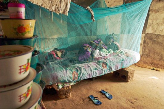 Mosquito nets: Prevent Malaria: Big problem, some simple solutions.