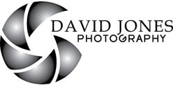 Portfolio :: Weddings 1 :: Stunning Wedding Photography in Surrey and the South East by David Jones Photography LSWPP, LSISEP