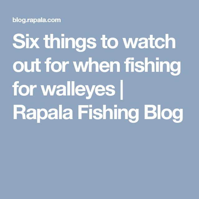 Six things to watch out for when fishing for walleyes | Rapala Fishing Blog