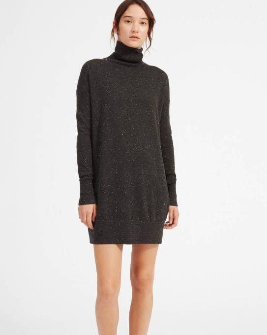 c5c7235fe50 The Cashmere Turtleneck Dress - Everlane
