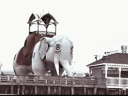 Lucy the Elephant... 9200 Atlantic Avenue, Margate, NJ 08402 open in season daily 10-8, off season weekends only 10-5. $4 admission
