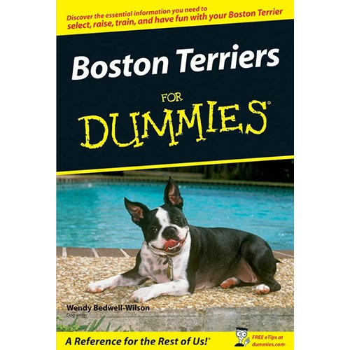 """boston terrier essay The boston terrier can trace its history back to 1865, in boston massachusetts at this time pit fighting between dogs was still a popular form of entertainment so the owners' goal was to produce a perfect """"fighting"""" breed, that's how the boston terrier was born, from a cross between the english bulldog and the now extinct white ."""