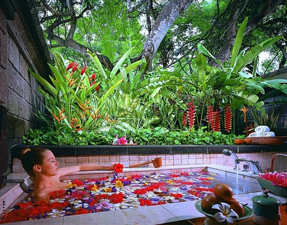 116 best Flower Bath - Baño de flores images on Pinterest ...