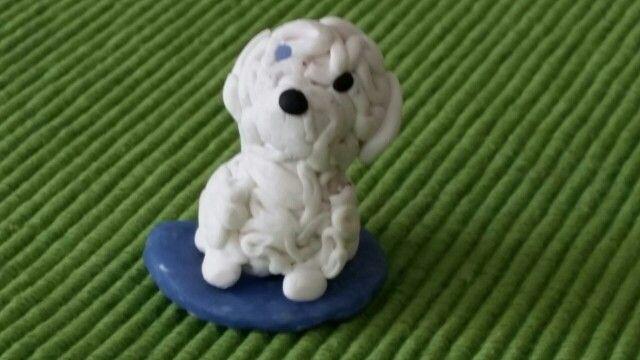 Peti kutya