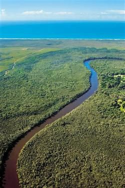 Noosa Everglades Discovery