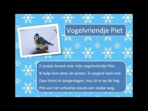 Vogelvriendje Piet - YouTube