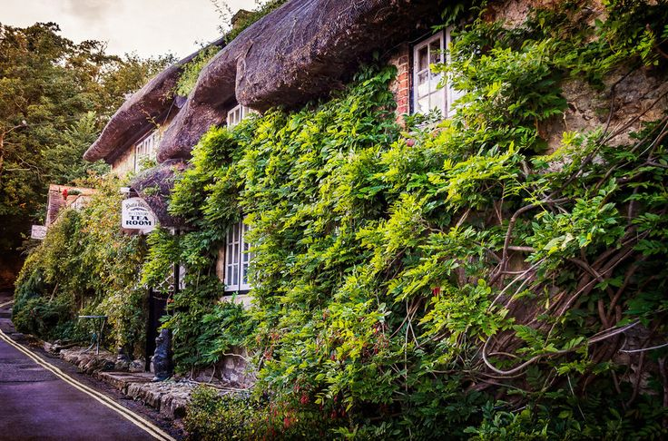 There's just no place so cosy. | 34 Photos That Prove The Isle Of Wight Is The Most Wonderful Place On Earth