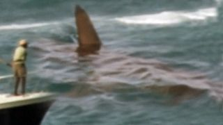 Megalodon Shark Caught on Tape - 2017 Documentary Collection of Best Sightings, Official CR 2.0 - YouTube