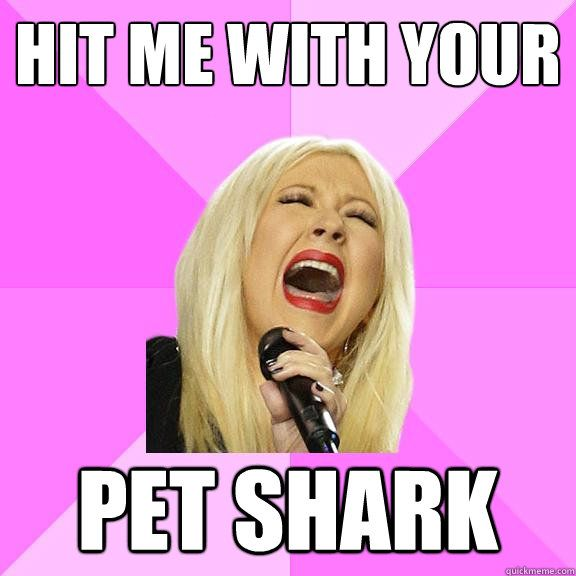 How did I not know about the Wrong Lyrics Christina meme???