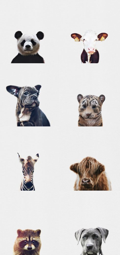 Nursery Art   Animal Prints available for download at diywallprints.store!