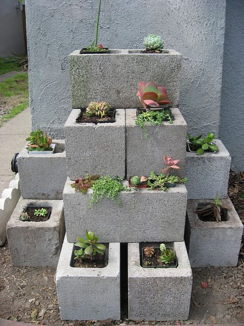 container garden - cinder block planter  I have the blocks and some old brown ones that would look cool with plants