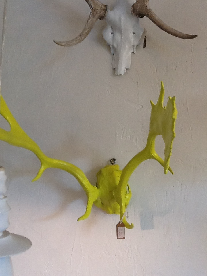 Yellow reindeer antlers