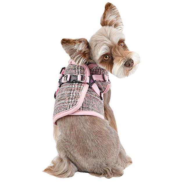 This Is A Step In Dog Vest With A Backside Zipper Closure This Style Keeps Tummy Warm During Those Outside Adventures There A Dog Harness Dog Vest Pet Paws