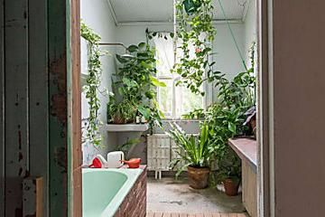 Add Some Green To Your Bathroom With These 5 Plants