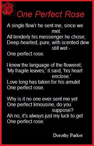 One Perfect Rose.....Dorothy Parker | Dorothy Parker | Pinterest
