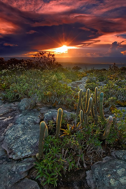 Sunsets are one of our inspirations... Visit us at www.melko.com.au!   - - -    [Chapada Diamantina, Bahia state, Brazil.]