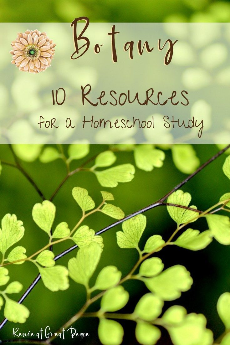 10 Resources For A Botany Homeschool Study Middle School Science