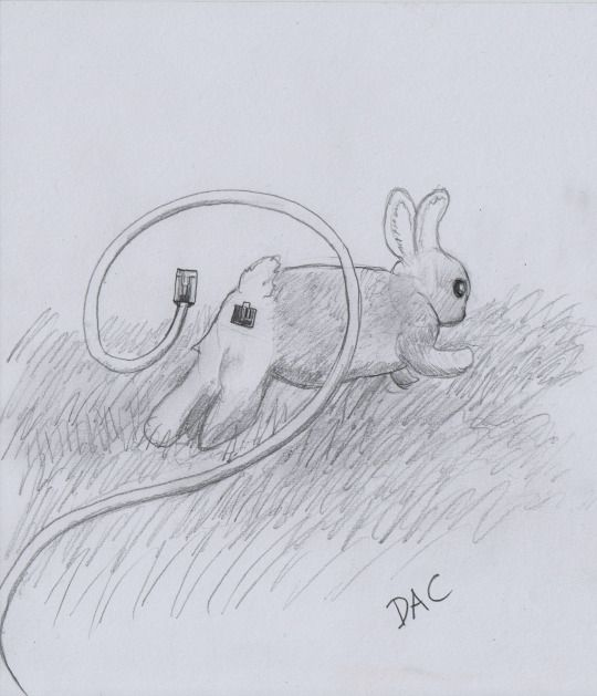 Ethernet bunny #bunny #ethernet #drawing #pencil