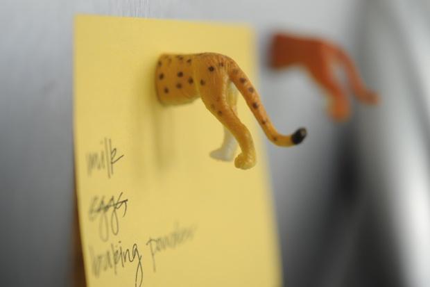 Animal magnets. Definitely a DIY for the new kitchenPlastic Animal