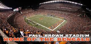 Image result for paul brown stadium