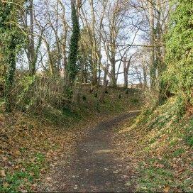 wandelroute Bospad in de buurt van Maastricht.