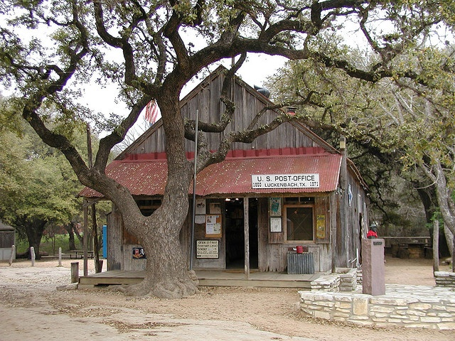 The infamous store in Luckenbach,Texas, where Dippity Doo is still on the counters, and where Willie, Waylon, and the boys used to sit under the oak tree and pick and play.
