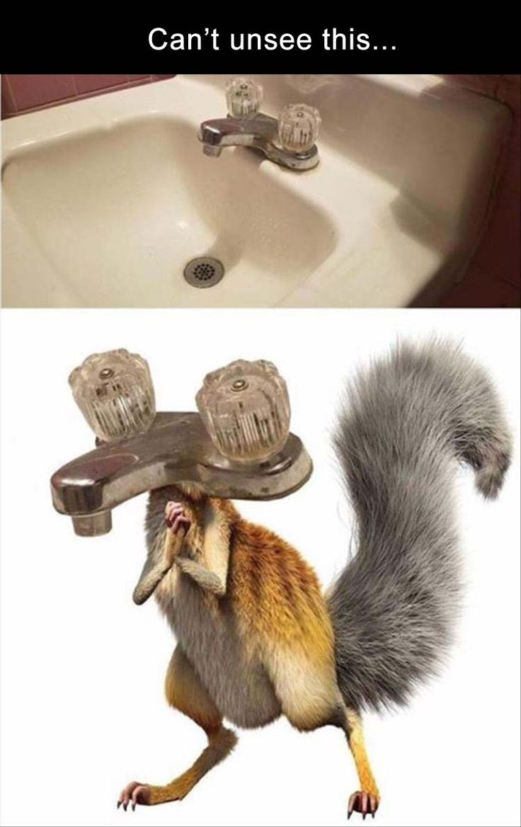 Afternoon Funny Picture Dump 32 Pics