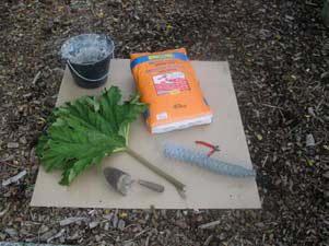 Tuindecoratie: bladeren Gunnera of rabarber in beton gieten voor betonbladeren als vogelbad