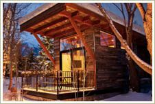 The WheelHaus Wedge cabin - Absolutely LOVE this type of cabin style