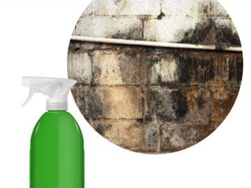 TRICKS FOR MAKING MILDEW DISAPPEAR