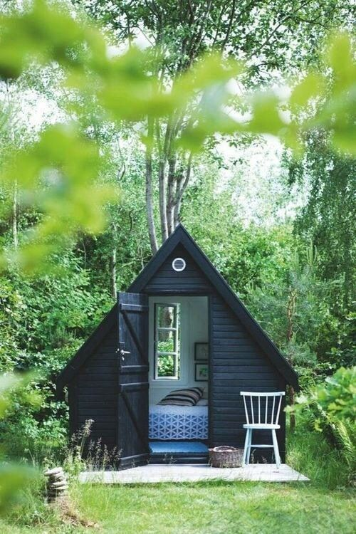 Backyard shed=reading room!