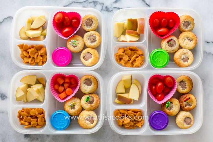 Healthy Eating Tin Food For Dogs