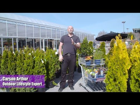 Carson Arthur shares an important design rule of thumb when picking out your plants during this weeks Great Garden Event!