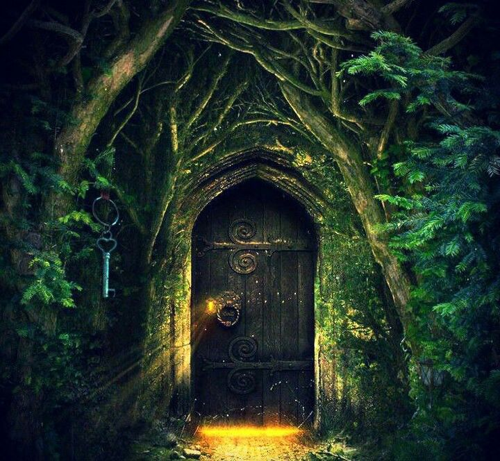 Enchanted forest door scenery pinterest forests and for The magic elf door