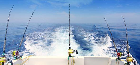 Fishing Charters, Costa Blanca, Spain  - We love real estate - http://casascostablanca.nl/