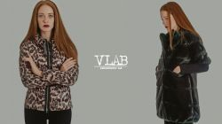 Vlab AI 14/15