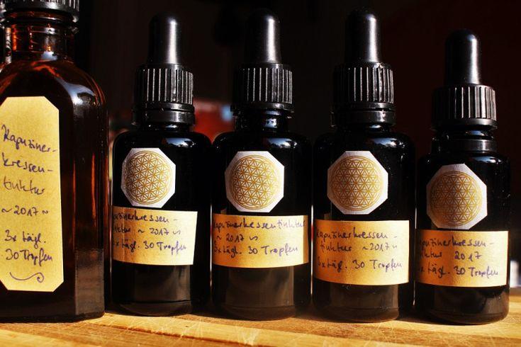 Antibiotische Tinktur aus Kapuzinerkresse selbstgemacht