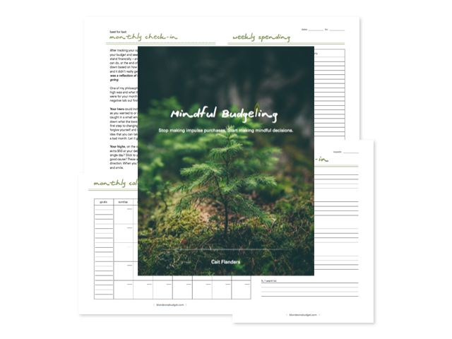 mindful-budgeting-program