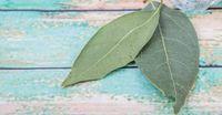 Vocês sabiam que a folha de louro é muito rica em vitaminas do tipo A, B, C e D, ferro, cálcio, magnésio e potássio? Além de ter carboidratos e fibras alimentares, e por isso elas trazem inúmeros benefícios para nossa saúde.