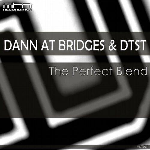 Dann At Bridges, Dtst — The Perfect Blend [Monotoon Recordings] :: Beatport