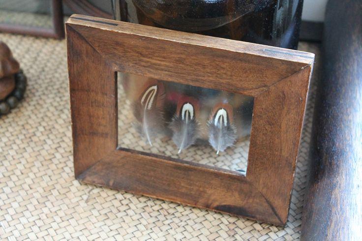 Locals Only | Framed Feathers | Vintage | Fazant | Veren in lijst http://www.localsonly-nl.com/#!lijsten/c61k